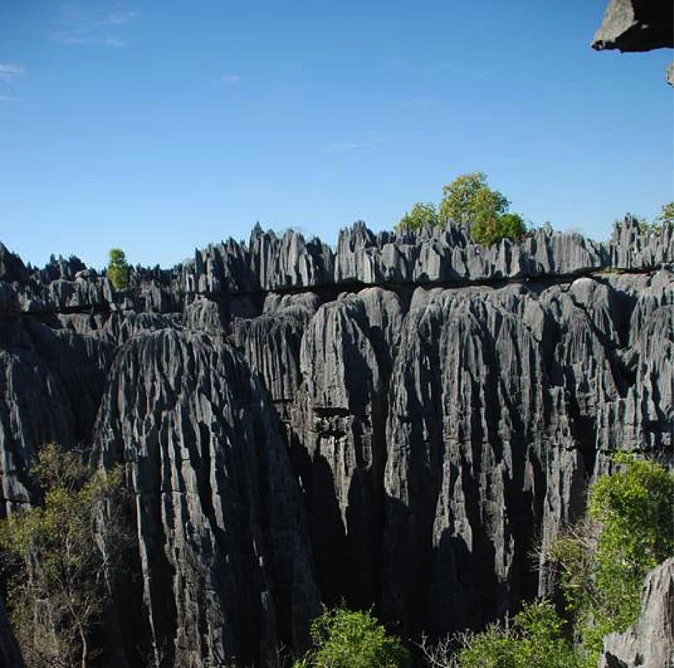 Ankarana_Nationalpark.jpg